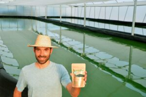 Balsas de producción Ecospirulina
